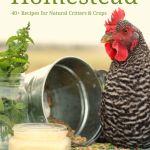 Natural Homestead book