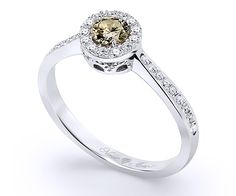 Halo type diamond ring in white gold, an exquisite setting of a central fancy green diamond of along with 31 white brilliant-cut diamonds in total weight of Sapphire Rings, Green Diamond, Diamond Jewelry, Halo, Emerald, White Gold, Fancy, Engagement Rings, Type
