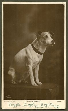 """Jack Russell Terrier Dog RPPC by obscurio on Etsy, $28.00"""