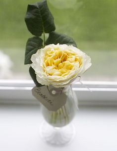Flirty Fleurs Rose Study with David Austin Garden Roses - Beatrice Little Rose, David Austin Roses, Relaxed Wedding, Summer Birthday, Color Studies, English Roses, Yellow Roses, Wedding Events, Glass Vase