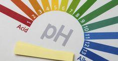 Understanding the Alkaline Ash Diet and How It Keeps Your Body Healthy Alkaline Rich Foods, Acid And Alkaline, Alkaline Diet, Alkaline Foods, Healthy Oils, Healthy Foods To Eat, Ph Balance Diet, Alkalize Your Body, Wishing Stones