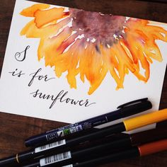 Lettering and watercolor illustration by @kellycreates using @tombowusa Dual Brush Pens