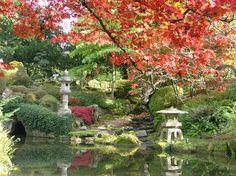 Envie de profiter de jardins japonais, d'une ambiance tropicale, des pâtisseries du Maghreb ? Pas besoin de réserver un vol, on trouve tout cela en France. Art Asiatique, France, Parcs, Beautiful World, Bonsai, The Good Place, Nature, Golf Courses, Images