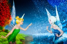 Secret of the Wings Cosplayers: Tink-Ichigo as Tinkerbell Perevinkl as Periwinkle Wings created by FaeryAzarelle Photographed by La-Clover Source: Tink-Ichigo via deviantART