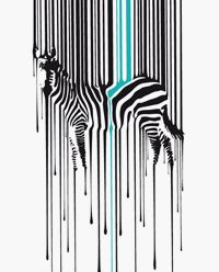 Even Zebras like a little boho color splash*