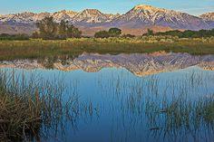 Owens Valley | pond owens valley...