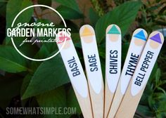 Free Printable Gnome Plant Markers - Somewhat Simple