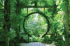 A MOON WINDOW  Climbing the Walls: Planting with Vines - Designing Home Lifestyles Magazine