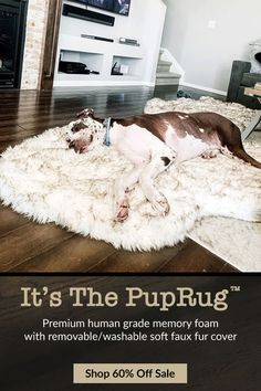 The PupRug orthopedic dog bed doubles as a stylish rug runner & is designed for both you & your pet to enjoy. Faux Fur & Memory Foam combine for ultimate luxury comfort Diy Pet, Orthopedic Dog Bed, Cesar Millan, Dog Rooms, Cute Kittens, Dog Training, Training Collar, Training Pads, Training Classes