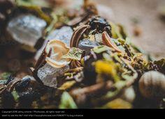 Foto 'Gewürzmischung VI' von 'johny schorle' #food #foodphotography #photography #stock  #paleo #vegan #vegetarian #macrophotography #spices #seasonings #blend #salt