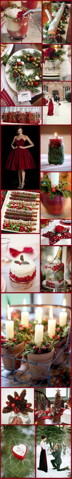Wedding App ♡ HOW TO successfully plan a wedding ♡ https://itunes.apple.com/us/app/the-gold-wedding-planner/id498112599?ls=1=8 Christmas wedding