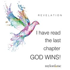 REVELATION I have read the last chapter GOD WINS!