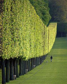 jardín del Castillo de Sceaux (cerca de Paris)