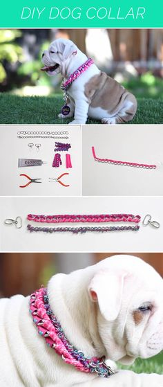 [VIDEO] We're teaching you how to make this awesome dog collar to make your dog look great. Dog Accesories, Pet Accessories, Diy Dog Collar, Pet Collars, Animal Projects, Animal Crafts, Dog Coats, Pet Clothes, Dog Leash