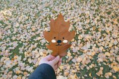 studio meez: In Autumn every leaf is a flower...