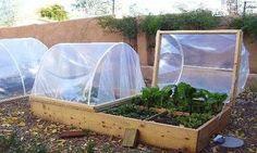 Идея теплицы! | сад-огород | Постила