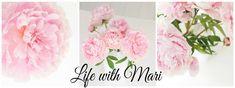 Life with Mari: Aikuisten Lise-Lotet Knitting Socks, Handicraft, Deco, Pattern, Jewelry, Life, Socks, Creative Crafts, Creativity