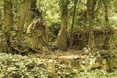 vines embracing the headstones...Highgate Cemetery...