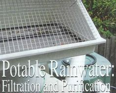 Comprehensive guide to filtering rainwater for drinking, bathing, and washing dishes.