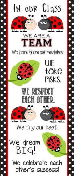 LADY BUG  Theme Classroom Decor / Character Education  Banner / In Our Class ... We Are A Team / JPEG / ARTrageous FUN / LARGE banner / Vistaprint.com