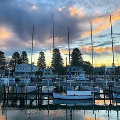 Live: Happy Friday - Ready for the Long Weekend #friday #happyfriday #lifestyleblogger #portfairy #sailing #boat #yacht #australia #longweekend #escape #explore #adventure #surf #beach #ocean #sunset #sunsets #clouds #sky #seetheworld #worldtravel #wanderlust #eatliveescape #ELE Ocean Sunset, Sailing Boat, Live Happy, Beautiful Sunrise, Sunrises, World Traveler, Long Weekend, Happy Friday, New Zealand