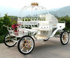 I have always dreamed of being whisked away by a horse drawn carriage on my wedding day <3