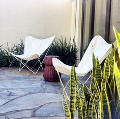 Butterfly Chairs - Australian Exclusive! - Ministry of Interiors | Interiors Online - Furniture Online & Decorating Accessories
