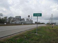 Crabb Texas Trend News, News 8, Texas Land, 10 Interesting Facts, Facebook Likes, New Trends, Children, Amazing, Elevator