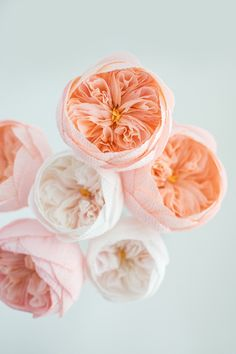 Gallery collection of paper flower designs from Crafted to Bloom, Paper Floral Designs by Jessie Chui