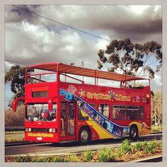 Le bus de visite de Melbourne. Il est tout rouge. #australie #melbourne #bus #visite