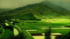 Mountains Green Landscapes