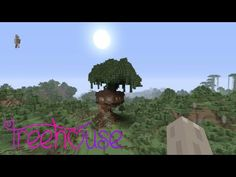 Minecraft - Worldtour/ Mine and Haleyhedgehogs build: The tree house! - YouTube