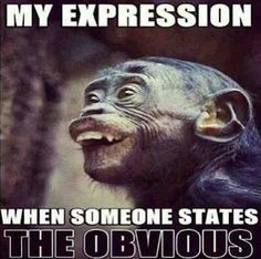 My expression when someone states the obvious