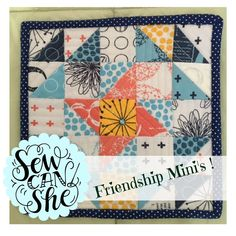 """""""Friendship Mini"""" Quilt Inspiration! — SewCanShe 