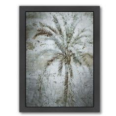Found it at Wayfair - 'Palm On Concrete' by Golie Miamee Painting Print