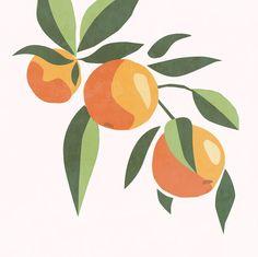 Modern orange tree branch print fruit wall art food poster   Etsy Painting Inspiration, Art Inspo, Inspiration Wall, Diy Canvas Art, Small Canvas Art, Framed Canvas, Fruit Art, Minimalist Art, Minimalist Painting