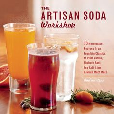 Book Review: The Artisan Soda Workshop by Andrea Lynn