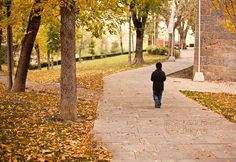 Walking alone by the autumn Walking Alone, Autumn, Fall, Photography Photos, Sidewalk, Public, Explore, Pavement, Curb Appeal