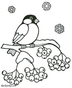 Community wall photos - My CMS Coloring Sheets For Kids, Adult Coloring Pages, Coloring Books, Feeding Birds In Winter, Victorian Christmas Decorations, Bird Outline, Inkscape Tutorials, Ladybug Party, Felt Cat