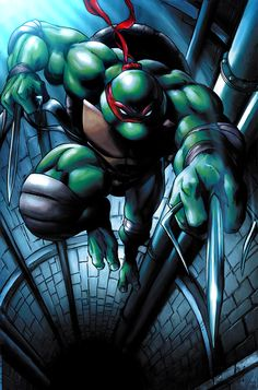Teenage Mutant Ninja Turtle - Raphael, Sai Master  I identified with Raphael on anger issues and wanting to fight through everything, but feeling helpless against all of the struggles. Even still, he loves his family and believes in good, even though he has a hard time seeing or feeling it.
