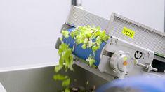 ΕΠΕΞΕΡΓΑΣΙΑ ΛΑΧΑΝΙΚΩΝ BALKAN SEC ΣΚΟΠΕΛΙΤΗΣ & KRONEN GmbH Πληροφοριες 6936 707893 #στεγνωτηριο_λαχανικων #ετοιμες_σαλατες #στεγνωμα_λαχανικών #επεξεργασια_λαχανικών #sprin_dryer #centrifuge_vegetables #Kronen_balkansec #βιοτεχνιες_σαλάτας #φρεσκα_λαχανικα
