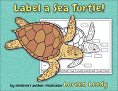 Label a Sea Turtle, Wooly Mammoth, or Allosaurus!