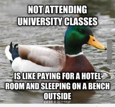 actual advice mallard meme 6 Great nuggets of wisdom from the Actual Advice Mallard Photos) Gold Mine, Funny Stuff, Funny Humor, Funny Things, Funny Pics, Funny Images, It's Funny, Random Stuff, Home
