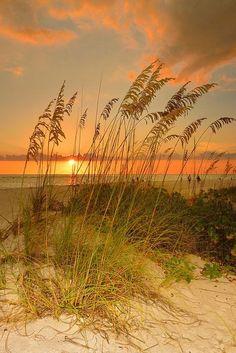 Anochecer sobre el Golfo de México en Isla de Anna Maria, Florida. Foto de…