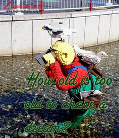 How old is too old to chase a dream? - TagesRandBemerkung #Zitate #Quotes