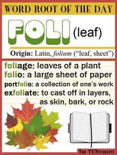 "Help: Word Root ""FOLI"" (Leaf) The YUNiversity; search their site for grammar questions, word root of the day, etc. search their site for grammar questions, word root of the day, etc. Teaching Vocabulary, Vocabulary Words, English Vocabulary, Vocabulary Strategies, Vocabulary Games, Vocabulary Building, The Words, Teaching English, Learn English"