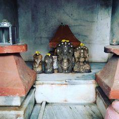 #cobra #hindutemple in #cochi #cochin #kerala #near #fortcochi #serpiente #hindugods #india