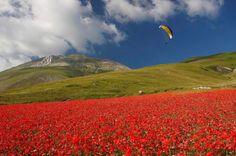 Parco Nazionale dei Monti Sibillini (Marche e Umbria),  di Silvio Moschini