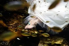 Love these beautiful foot jewels from Red-i by Chelsea! Great accessory for a trash the dress shoot in a cenote in the Riviera Maya!   #chelseabond #bondgirl #beautifulsandals #underwaterbride  #trashthedress #barefootsandals