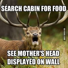 Horrified Elk